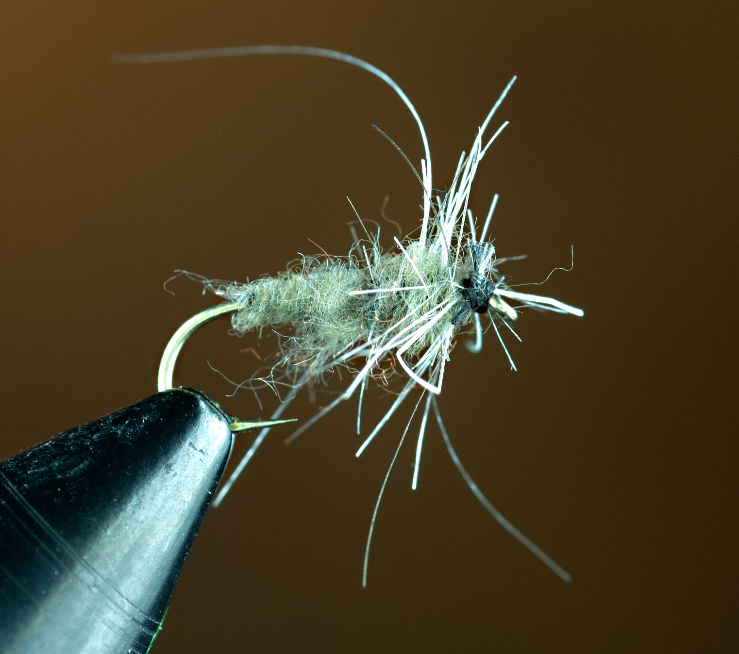 BWO Failed Emerger